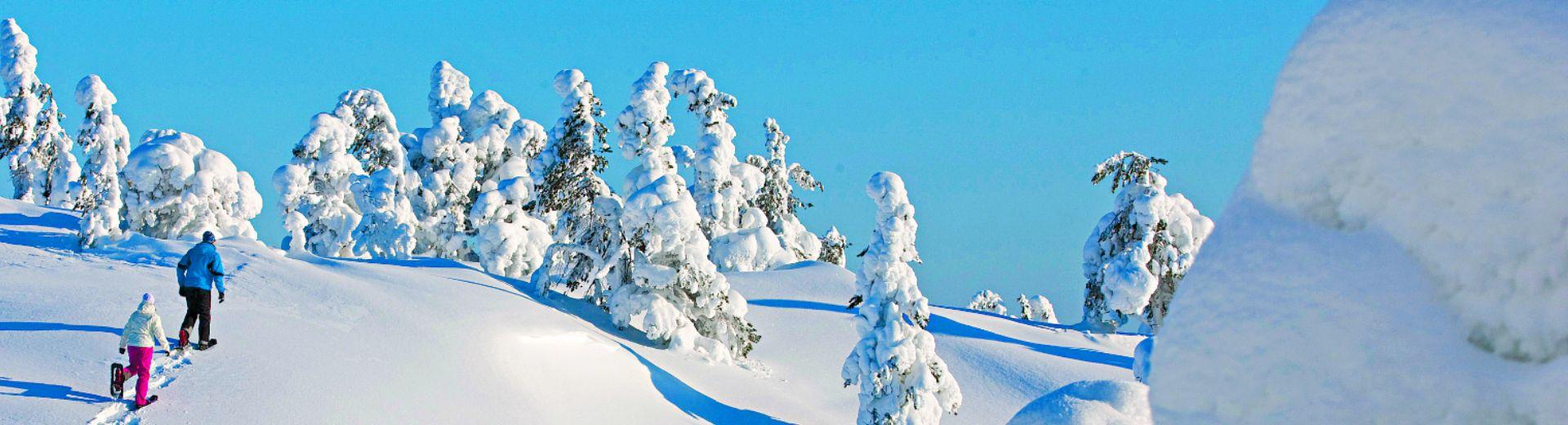 Winterabenteuer im Norden Finnlands